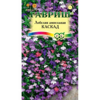 Многолетнее травянистое растение из семейства Лобелиевые, культивируемое как однолетник. Побеги тонкие, стелющиеся, длиной до 50 см. Цветение обильное с июня до осени. Цветки синей, красной, рубиновой, белой окраски до 2 см в диаметре.
