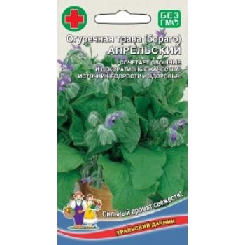 купить АПРЕЛЬСКИЙ в новосибирске, купить Огуречная трава (Бораго) в новосибирске
